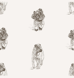 seamless pattern sketches walking poodle and vector image