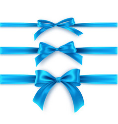 set blue bow and ribbon on white background vector image