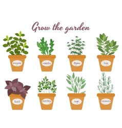 Set of herbs in pots with labels vector