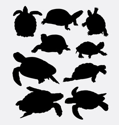 Turtle and tortoise animal silhouette vector image