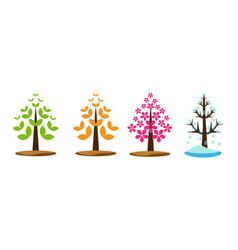 four season tree vector image vector image