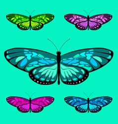 butterfly set 7 vector image