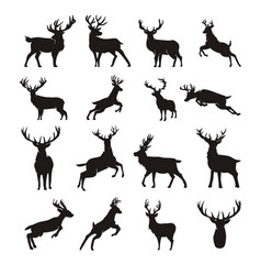 deer silhouette stag silhouette vector image