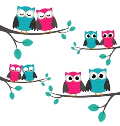 owls couples set vector image vector image