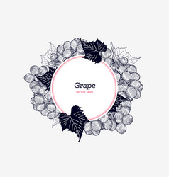 red grapes hand drawn engraving vector image