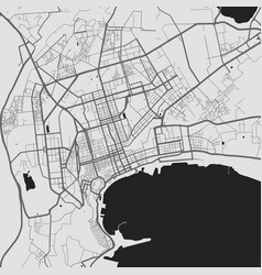 Urban city map baku poster grayscale street map vector