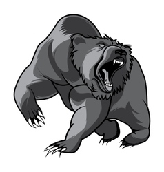 Walking bear animal head black and white vector