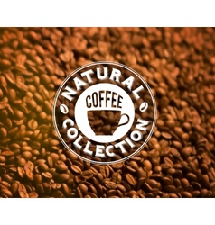 Premium quality coffee typography on blur vector image