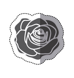contour rose with oval petals and leaves icon vector image