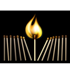 Matchsticks and fire vector image