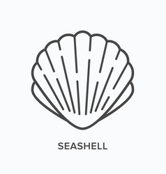 seashell line icon outline vector image