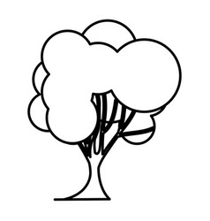 Sketch silhouette tree nature icon with trunk vector
