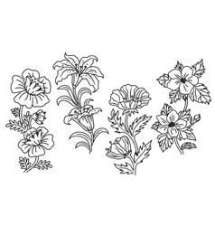 Black and white outline summer flowers vector image vector image
