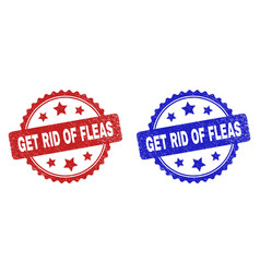 Get rid fleas rosette stamp seals with corroded vector