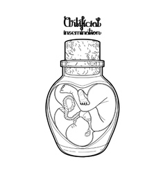Graphic fetus in the glass bottle vector