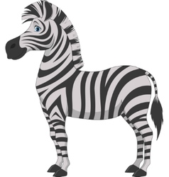 Happy zebra cartoon vector image