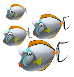 Set of cartoon fish isolated on white background vector