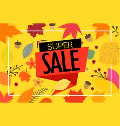 super sale season offer autumn sale advertising vector image