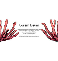 Template banner with cartoon colorful of corals vector
