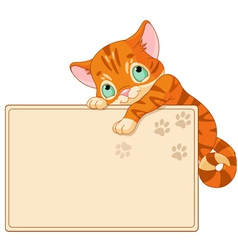 Cute kitten Invite or Placard vector image vector image