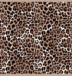 leopard or jaguar seamless pattern modern animal vector image vector image