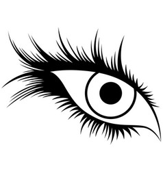 abstract human eye with long lashes vector image vector image