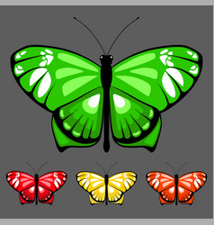 butterfly set 8 vector image