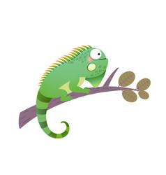 cartoon green iguana on a branch vector image