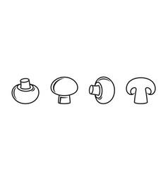 champignon vector image