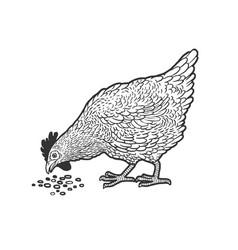 Chicken pecks grain sketch vector