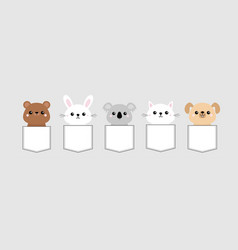 dog cat kitten bear rabbit hare grizzly koala vector image