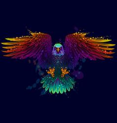 Eagle flying bald vector