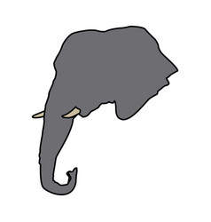 Head elephant wild animal safari african vector