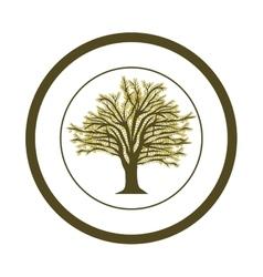 Tree natural ecology vector
