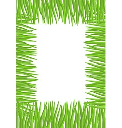 Frame of green grass Natural with space for vector image vector image