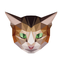 Brown cat low polygon head vector