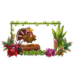 Cartoon Turkey Garden vector image