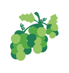 christmas grape icon green design vector image