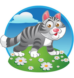 Grey cat on color background vector