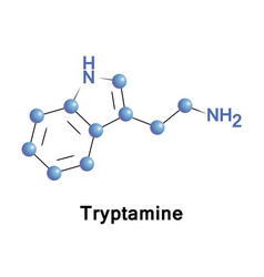 Tryptamine is a monoamine alkaloid vector