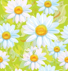 seamless pattern of white camomiles vector image vector image