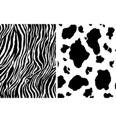 zebra and cow pattern vector image