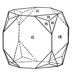 cube and trapezohedron vintage vector image