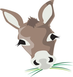 Donkey head vector