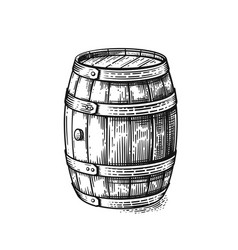 hand drawing wood barrel vector image