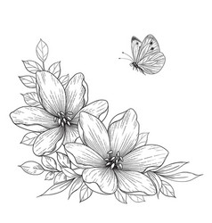 hand drawn flowers and flying butterfly vector image