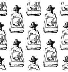 Pattern with bottle tequila vector