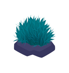 Sea grass aquarium composition vector