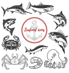 Set seafood icons isolated on white background vector