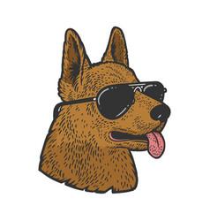 Shepherd in sunglasses sketch vector